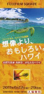 Takasagohawai_2