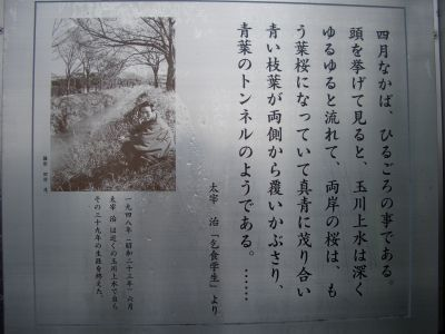 Tamagawa02bblog