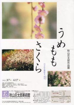saizu223